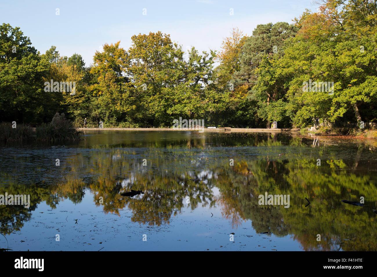 Keston Ponds in Autumn in Bromley Kent UK - Stock Image