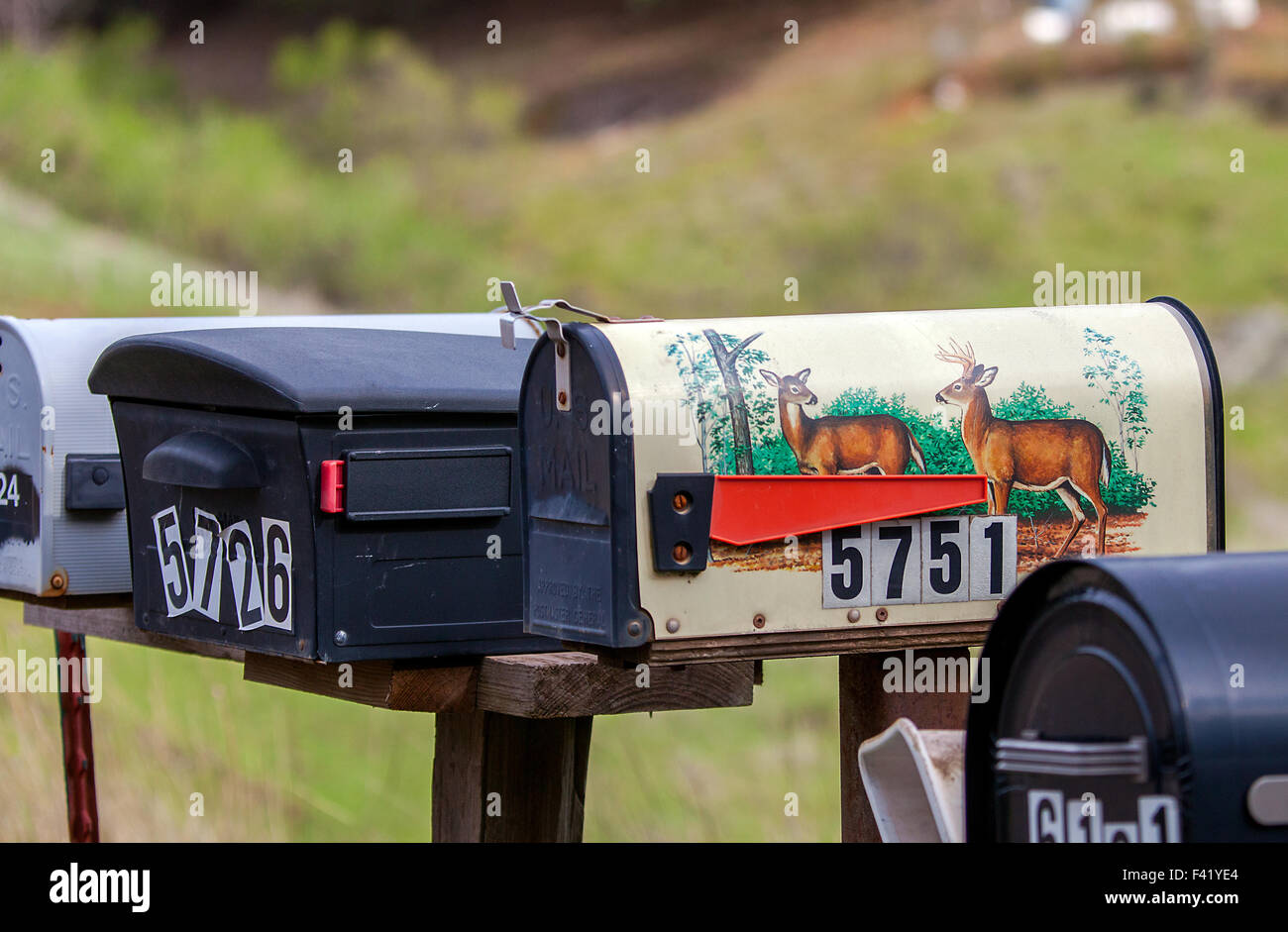 Letterbox system in California Stock Photo