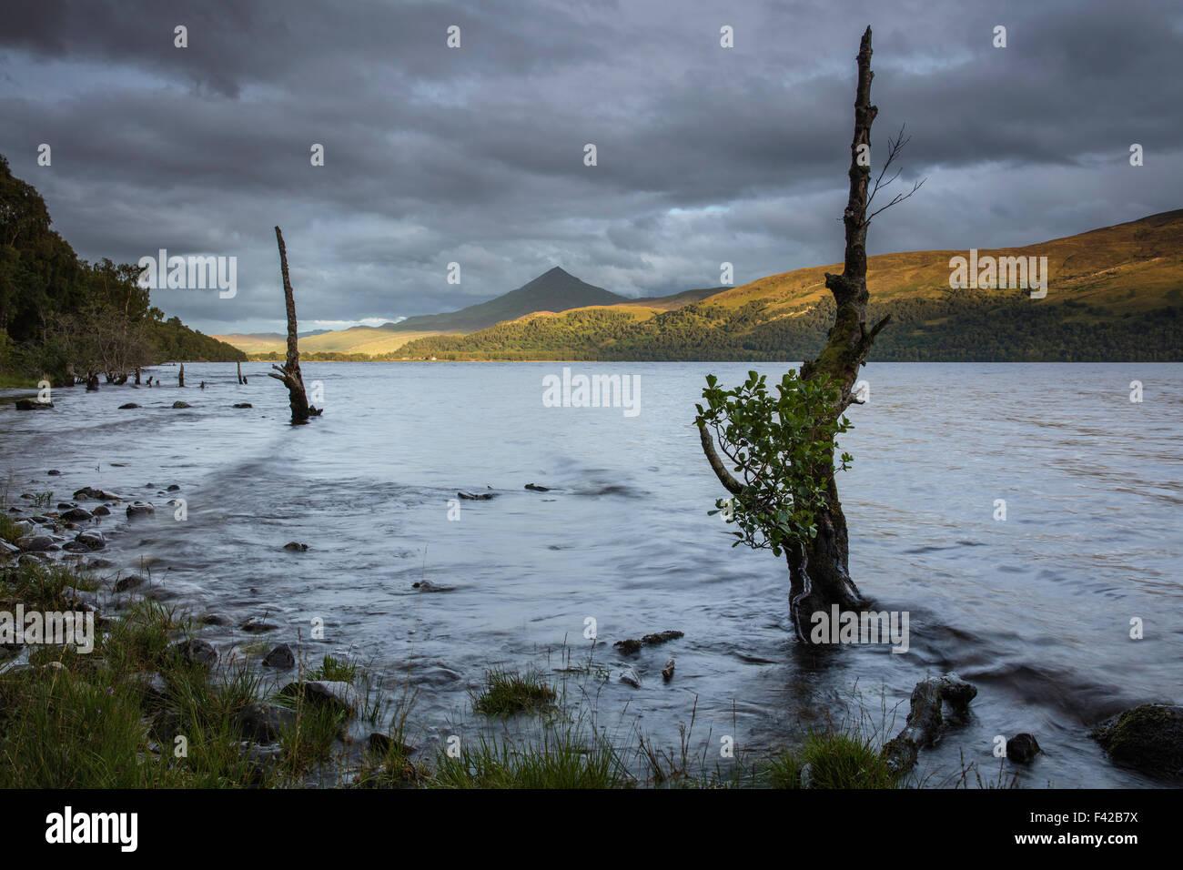 Schiehallion and Loch Rannoch, Perth and Kinross, Scotland, UK - Stock Image