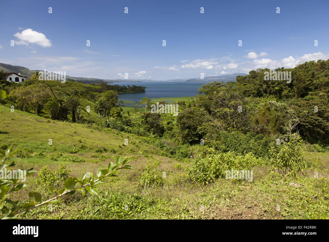 Lake Arenal in Costa Rica - Stock Image