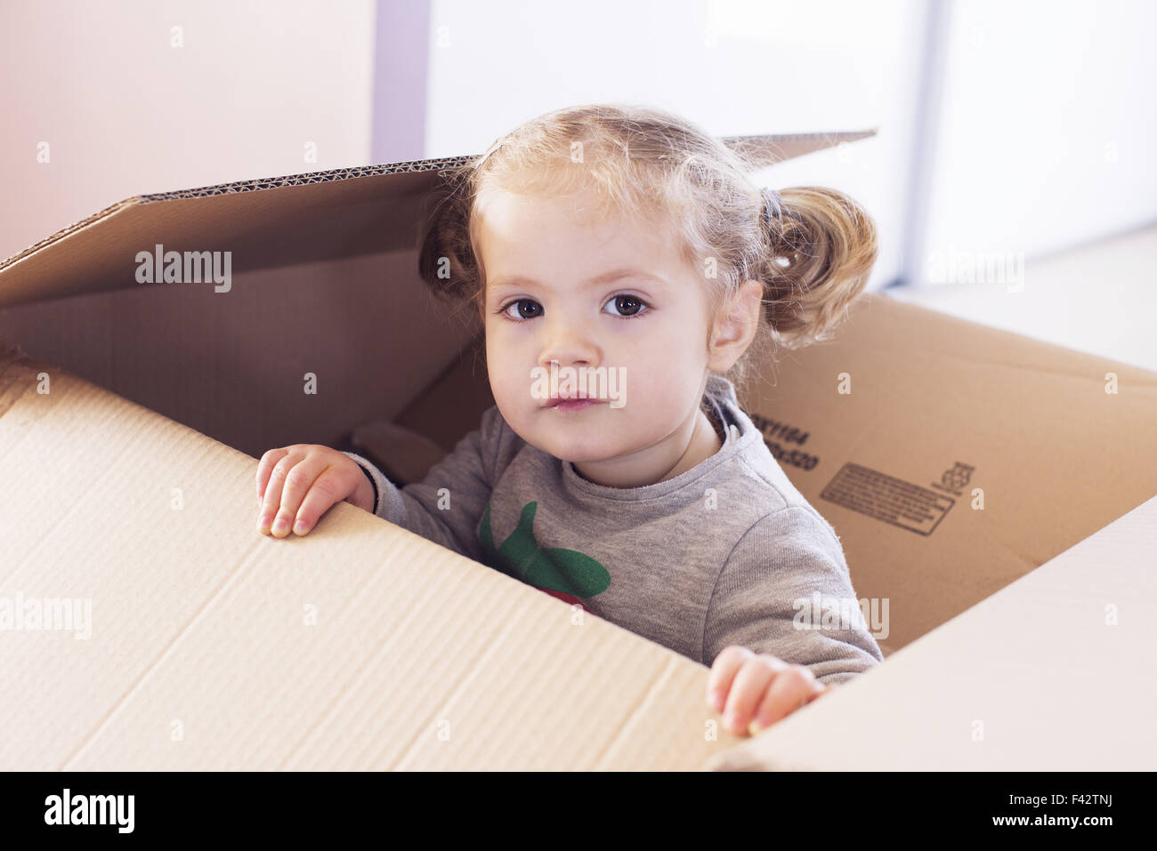 Little girl playing in cardboard box, portrait - Stock Image