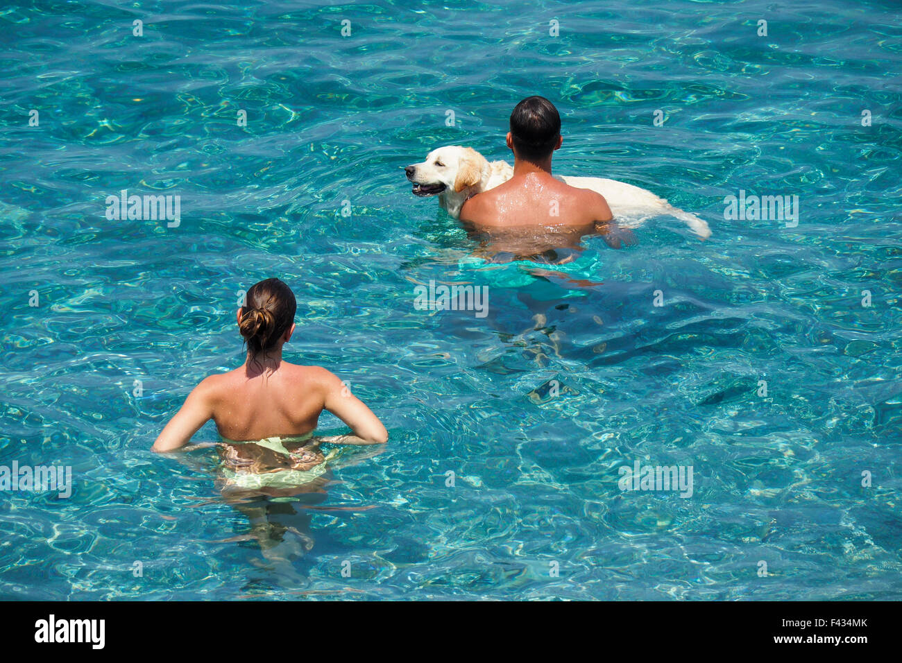 A couple bathing in the sea with their pet dog. - Stock Image