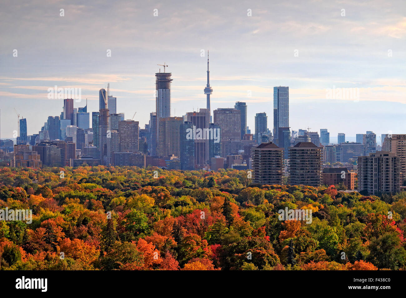 Toronto city skyline with major landmark buildings including CN Tower and downtown officer skyscrapers with midtown - Stock Image