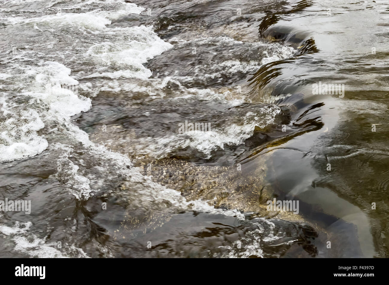 Rapids on a stream Stock Photo
