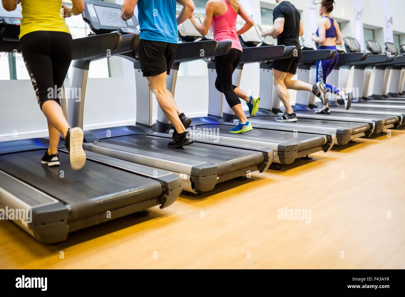 Fit people jogging on treadmills - Stock Image