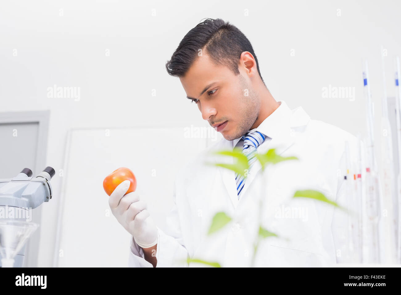 Perplex scientist looking at tomato - Stock Image