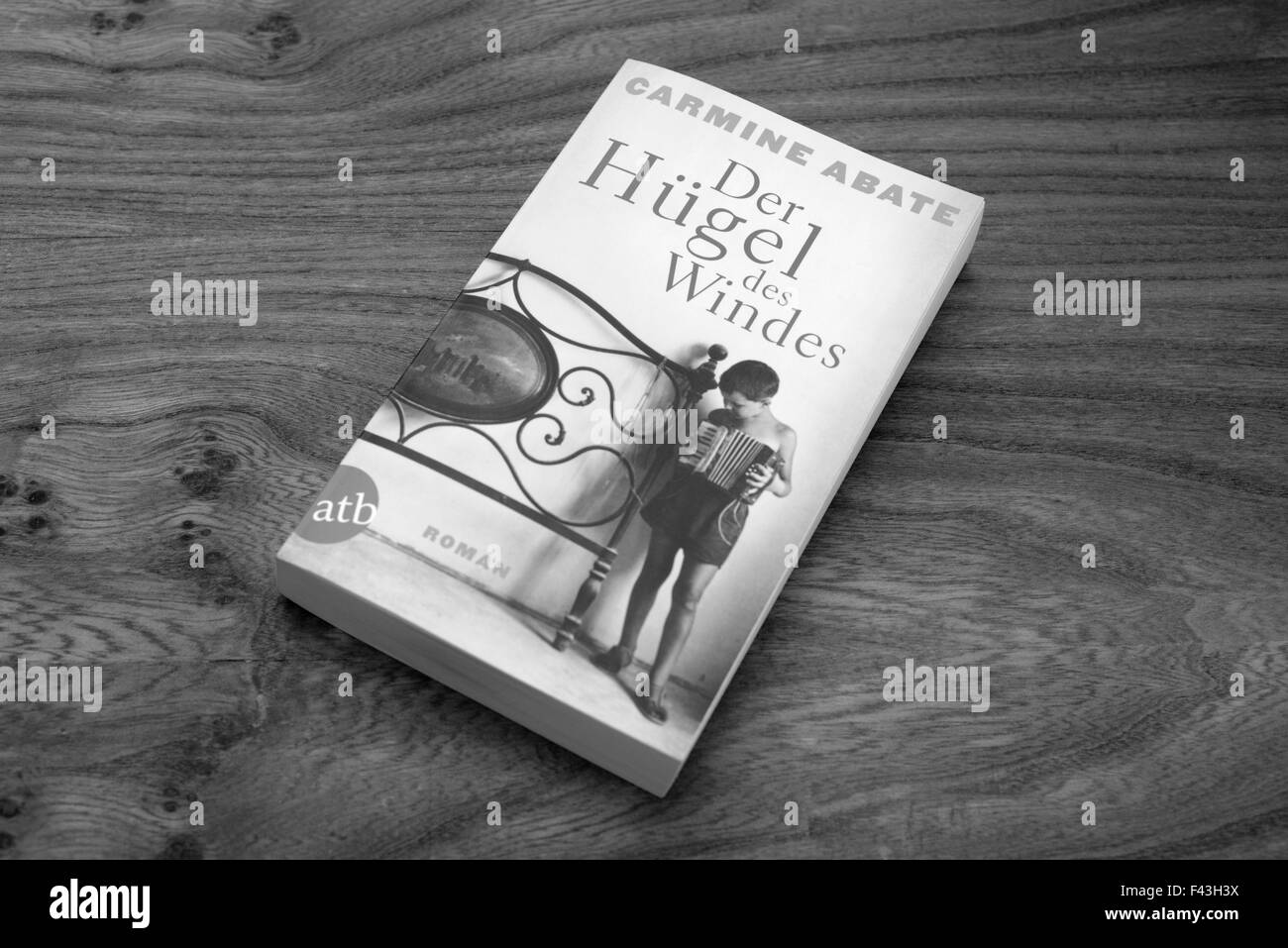 Carmine Abate Der Hugel des Windes paperback book Stock Photo