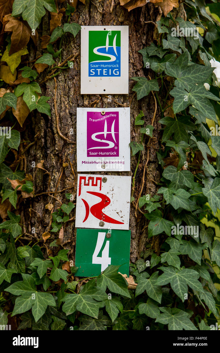UNESCO Upper Middle Rhine Valley, various signs on hiking trails in the Rheingau on a tree - Stock Image