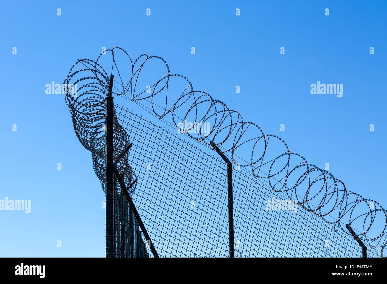 Wired Fence with Spiral Barbwire Stock Photo: 88617675 - Alamy