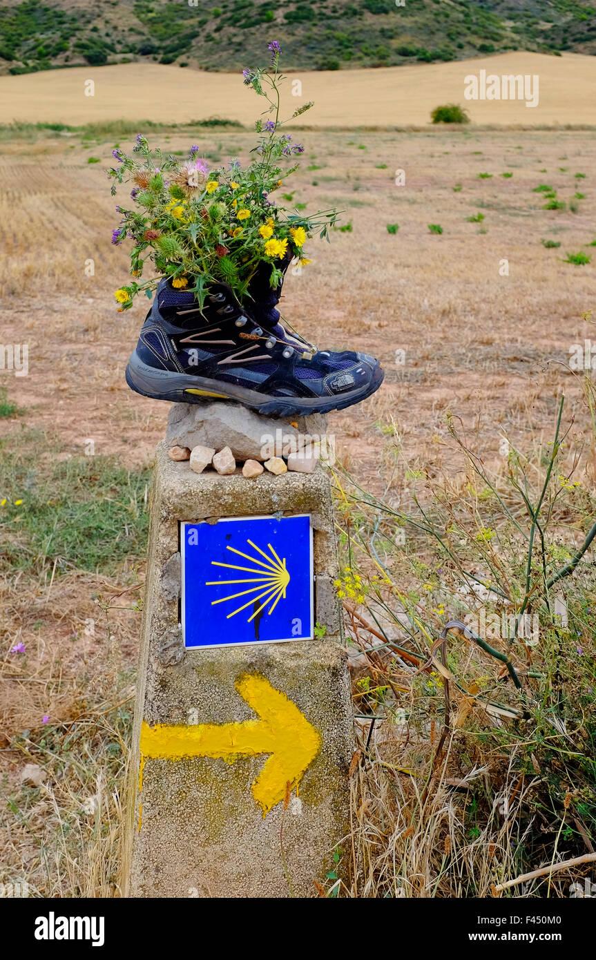 Yellow arrow marking the Way of Saint James (Camino de Santiago), Villamayor de Monjardin,Navarre,  Spain - Stock Image