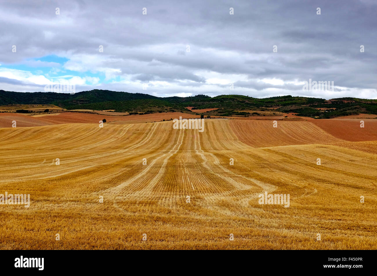 Harvested wheat fields on the Way of Saint James (Camino de Santiago) before Los Arcos,Navarre, Spain - Stock Image