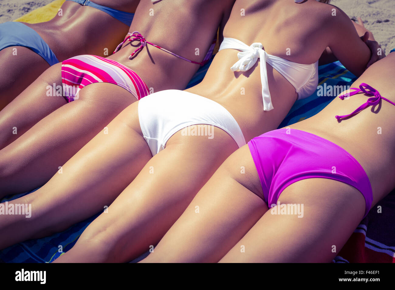 girls in bikinis sunbathing stock photo 88653573 alamy