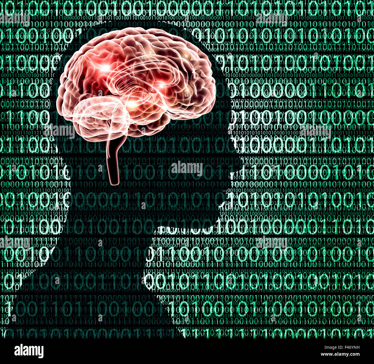 x-ray image of human head with binairy code and a brain. - Stock Image