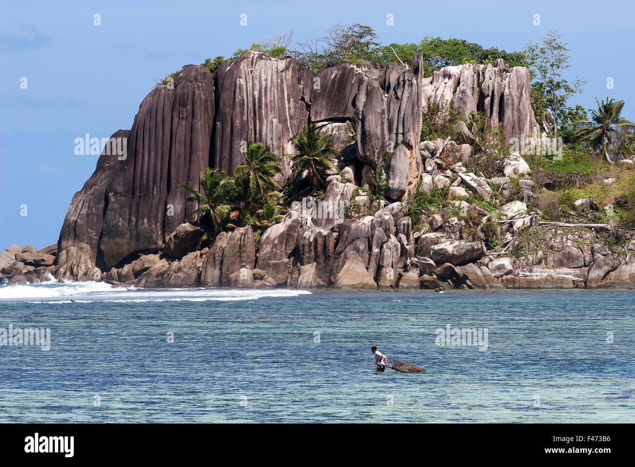Seychelles Tropical Fish Stock Photos & Seychelles ...