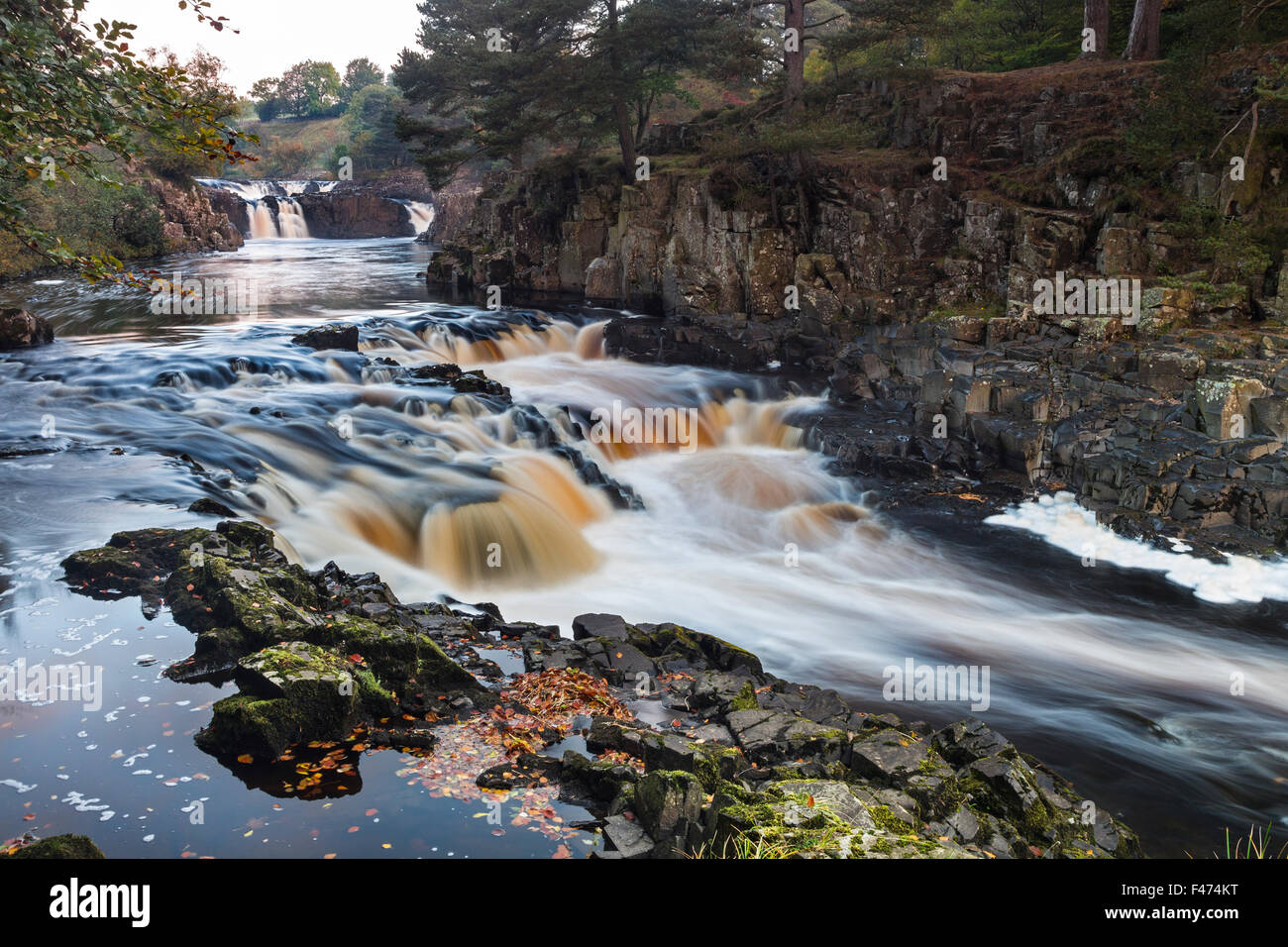 River Tees, Low Force, Bowlees, Upper Teesdale, County Durham.  Thursday 15th October 2015, UK Weather.  It was - Stock Image