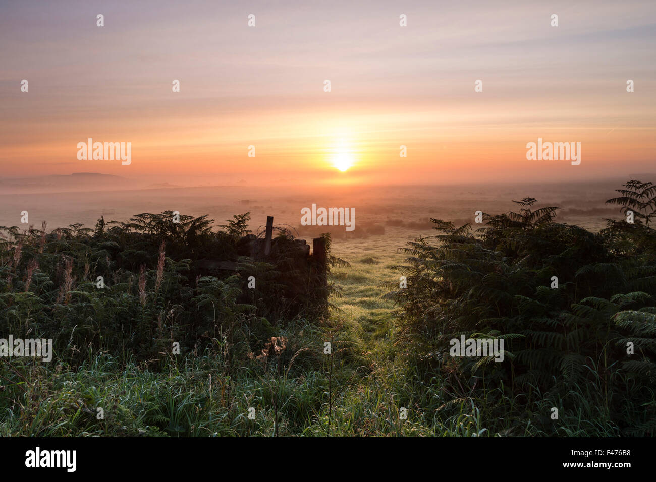 The Rising Sun Burning Through Mist on Farmland Teesdale, County Durham UK - Stock Image