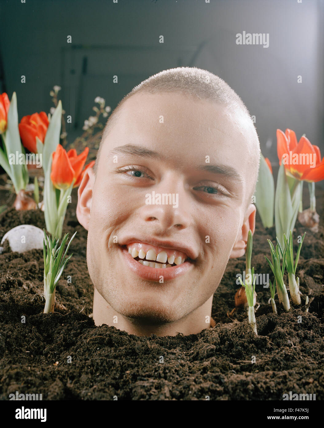 The head of a man in a flowerbed, Sverige. - Stock Image