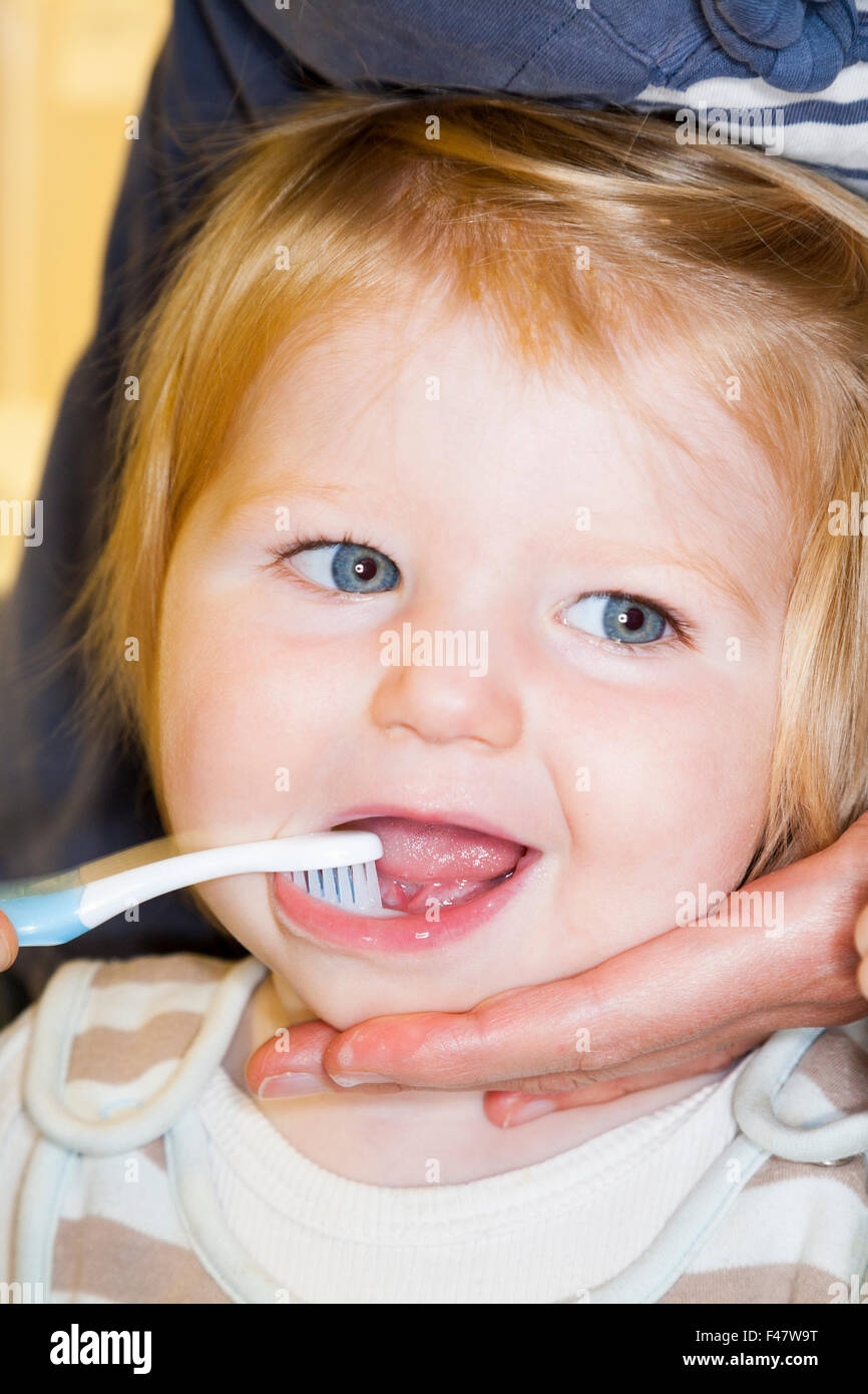 Child / baby having her milk teeth brushed with a toothbrush / tooth brush - by her mother. Stock Photo