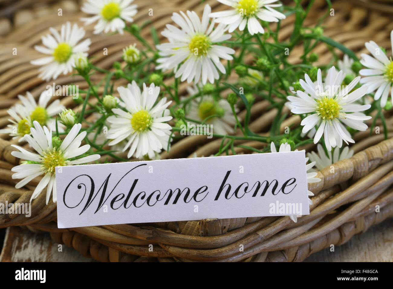 Welcome Home Card With Chamomile Flowers On Wicker Tray