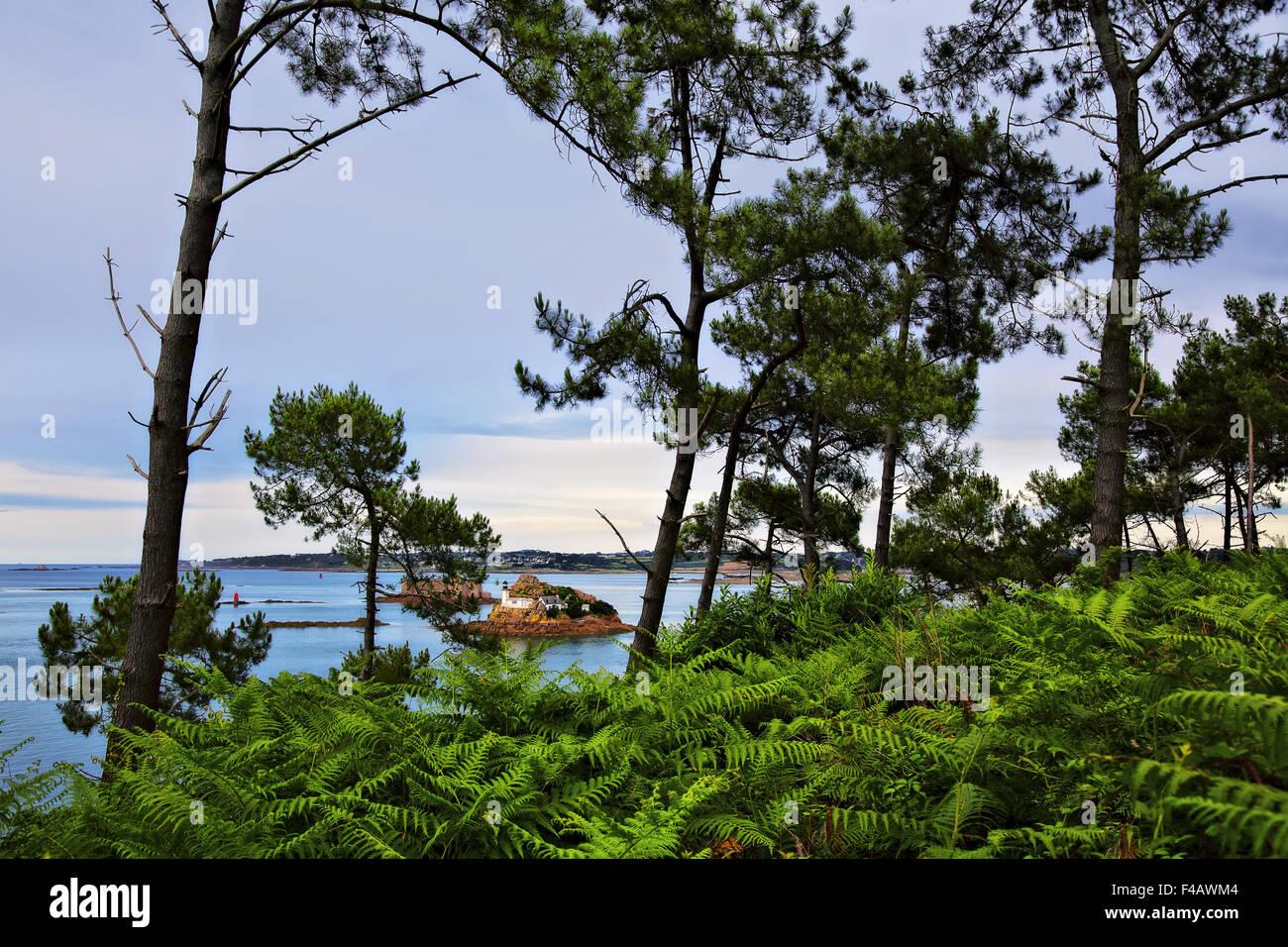 Coast near Carantec, Brittany, France Stock Photo