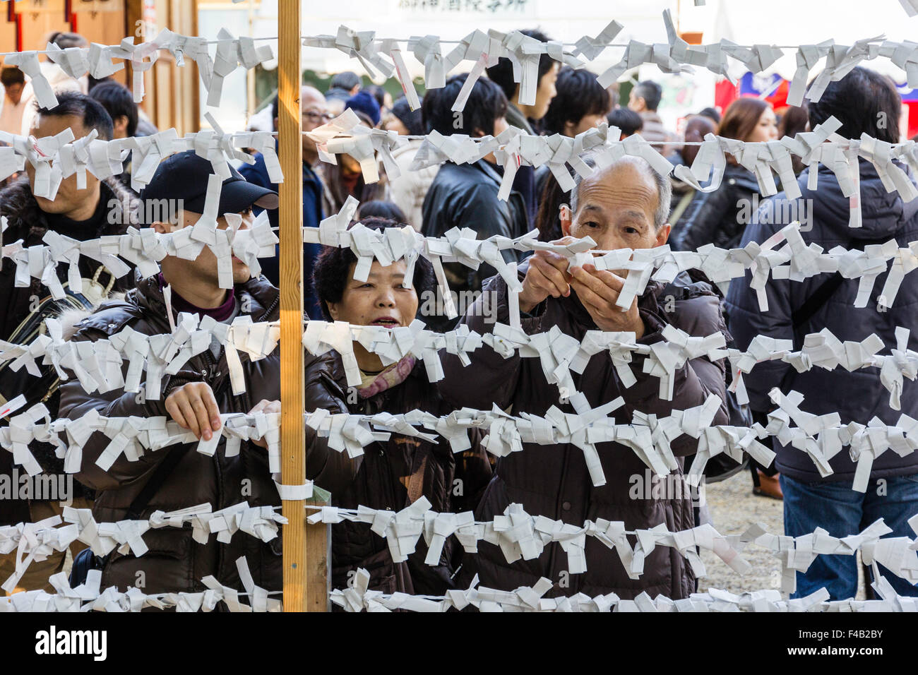 Japan, Nishinomiya shrine, New year's Day, Shogatsu. Seen through frame, senior man trying omikuji fortune paper - Stock Image