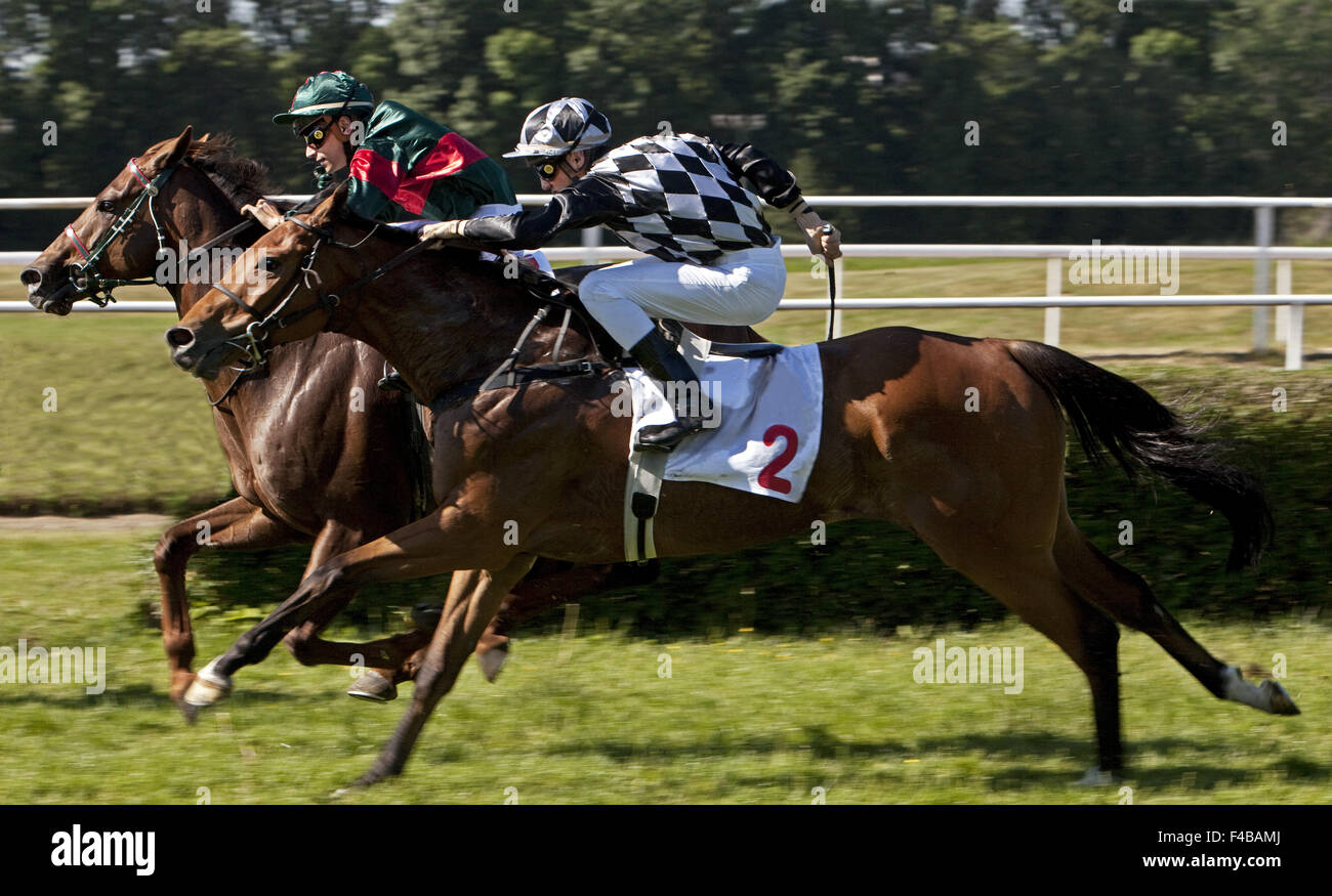 Horse racing, Dortmund, Germany. - Stock Image