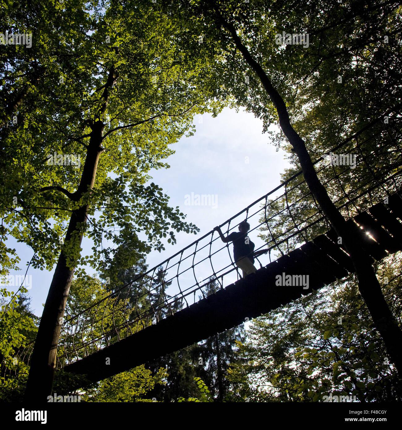 The Adventure Bridge in Bad Berleburg. - Stock Image