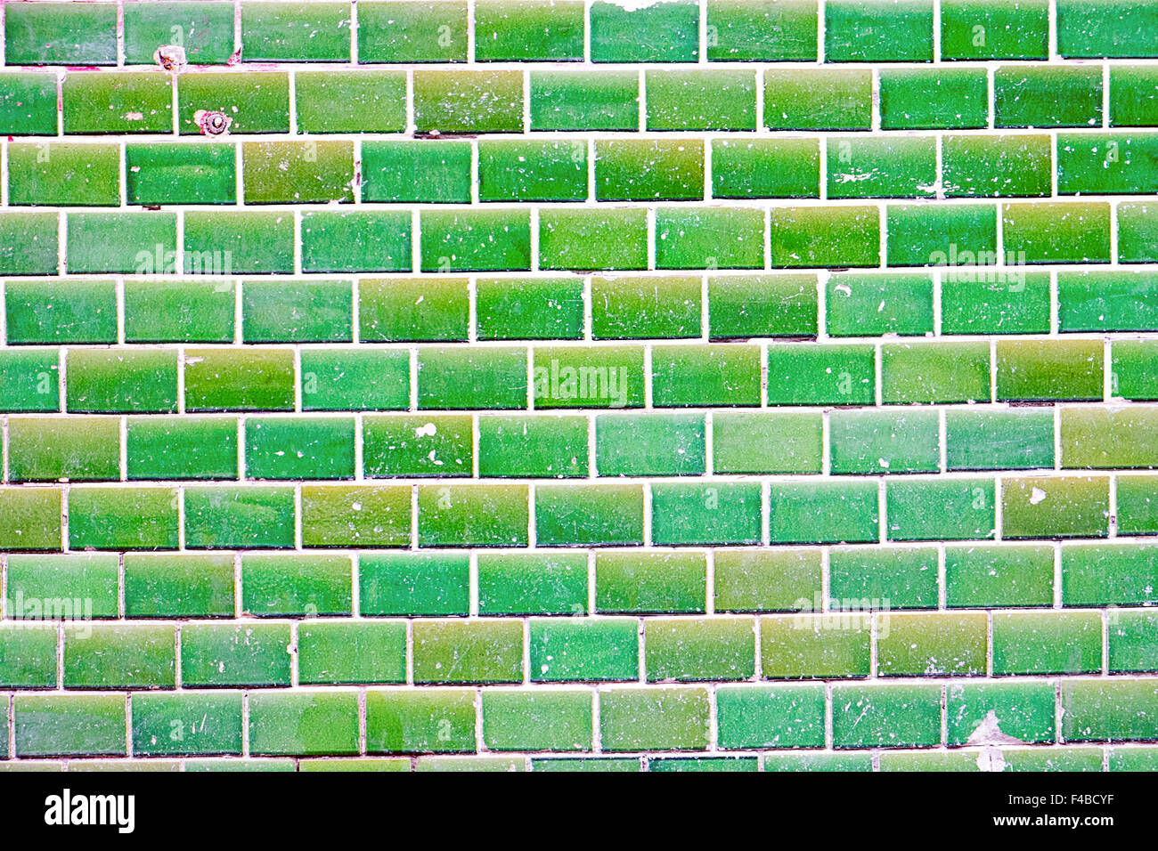 Green tiled wall - Stock Image