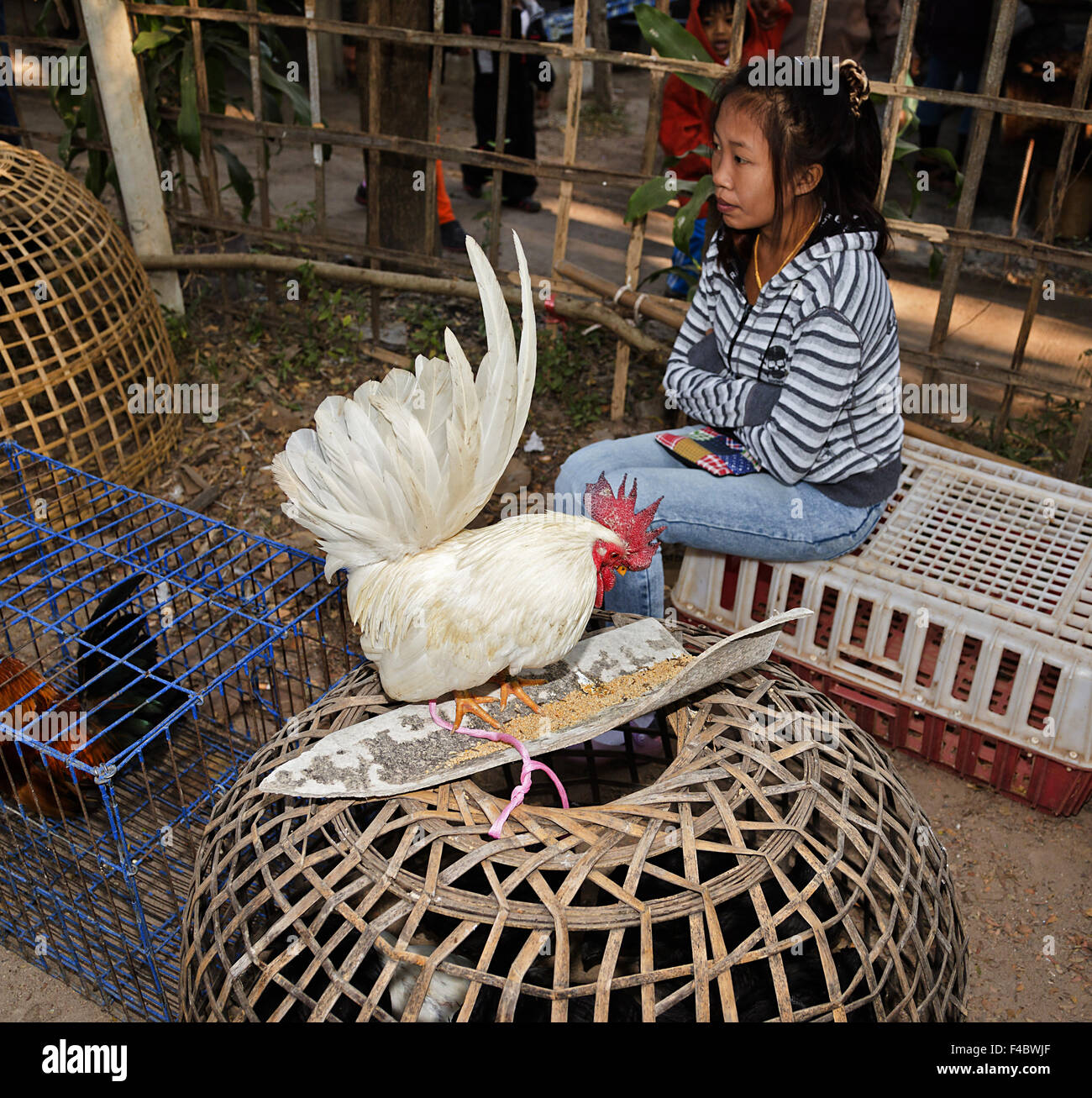 Poultry market - Stock Image