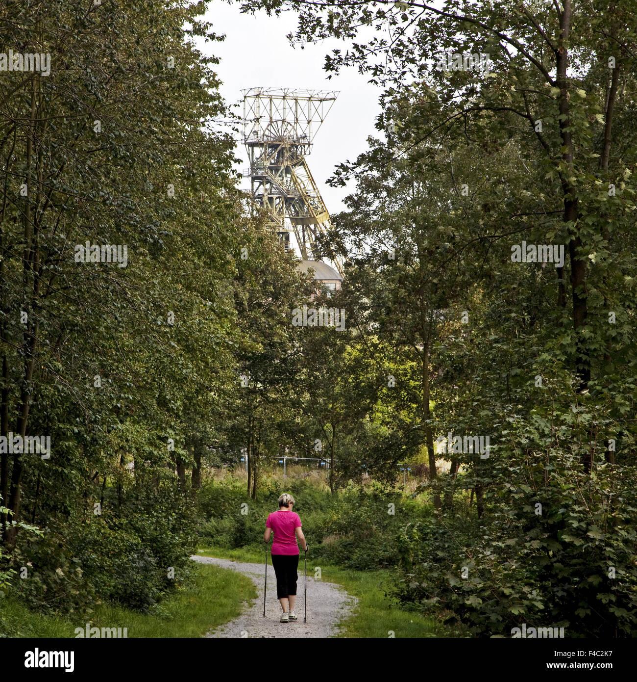 Nordic walker, Oer-Erkenschwick, Germany - Stock Image