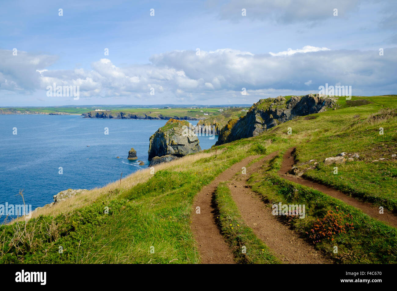 South West Coast path and Cornwall coast view near Mullion, Lizard Peninsula, Cornwall, England, UK - Stock Image