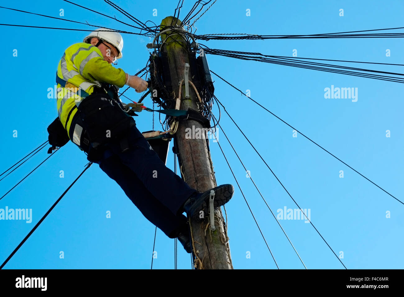 Ladder And Telegraph Pole Stock Photos Amp Ladder And