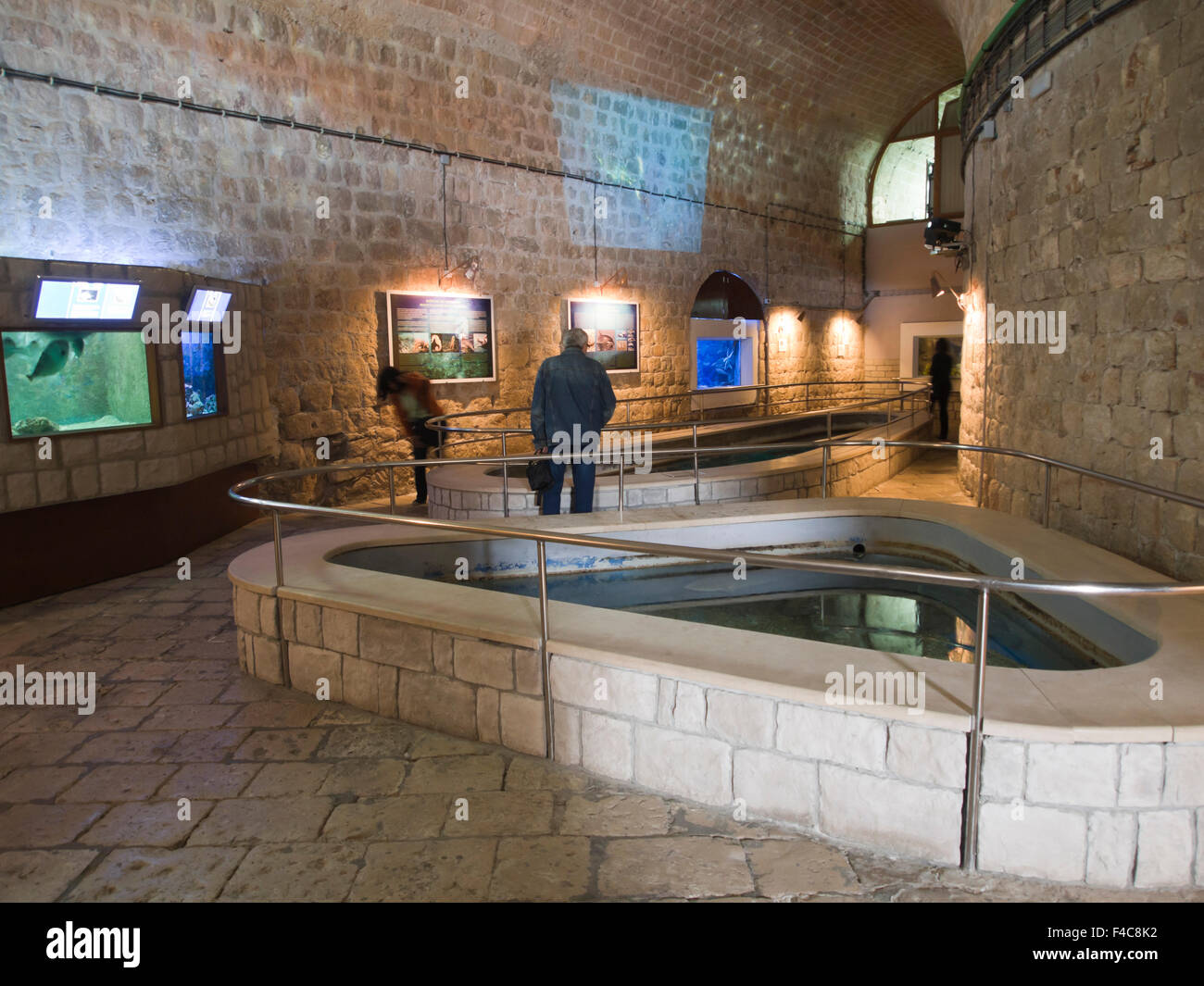 In addition to showing  Mediterranean sea life, the Aquarium in Dubrovnik Croatia has an imposing home in the old - Stock Image