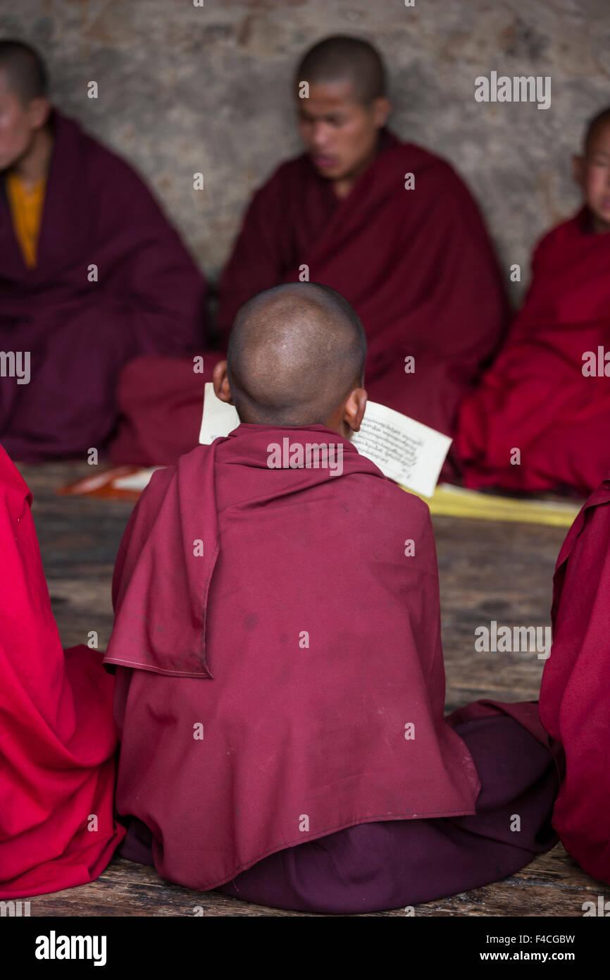 Bhutan, Monks studying - Stock Image