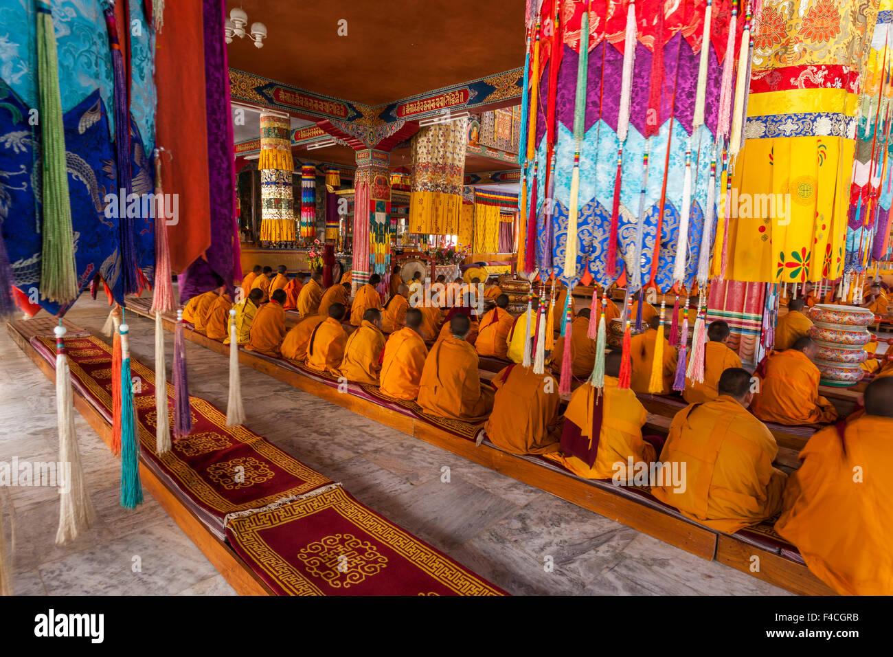 Bhutan, Jakar, Monks chanting. - Stock Image