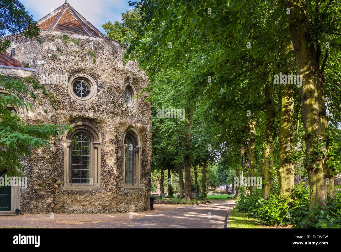 The grounds of Bury St Edmunds Abbey and St Edmundsbury Cathedral, Bury St Edmunds, Suffolk, England, UK - Stock Image