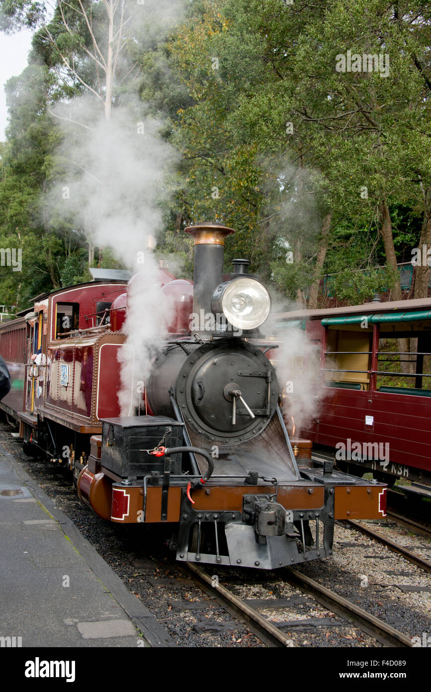 Australia, Dandenong Ranges. Puffing Billy, historic vintage steam train, circa early 1900's. Belgrave Station. - Stock Image