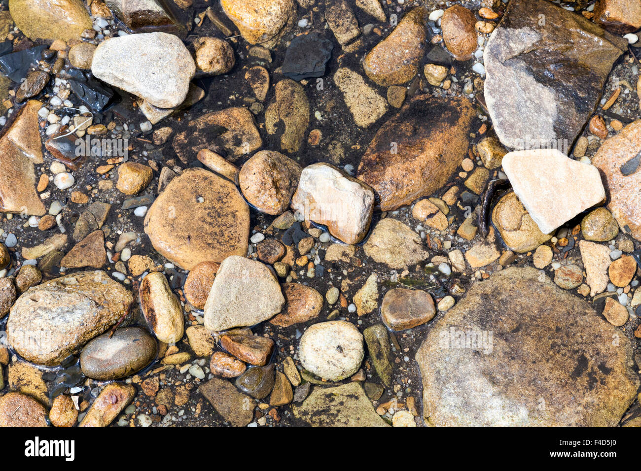 Pebbles and stones at the edge of a stream - Stock Image