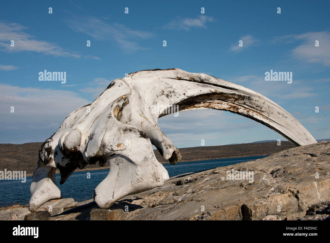 Canada, Nunavut, Qikiqtaaluk Region, Kekerten Island. Kekerten Historic Park preserving artifacts from whalers. - Stock Image