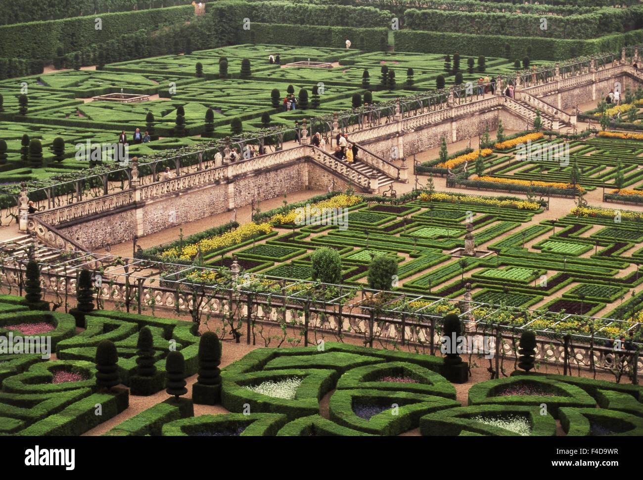 France, Indre-et-Loire, Villandry Jardins et Chateau, Formal garden at the Chateau de Villandry. (Large format sizes - Stock Image