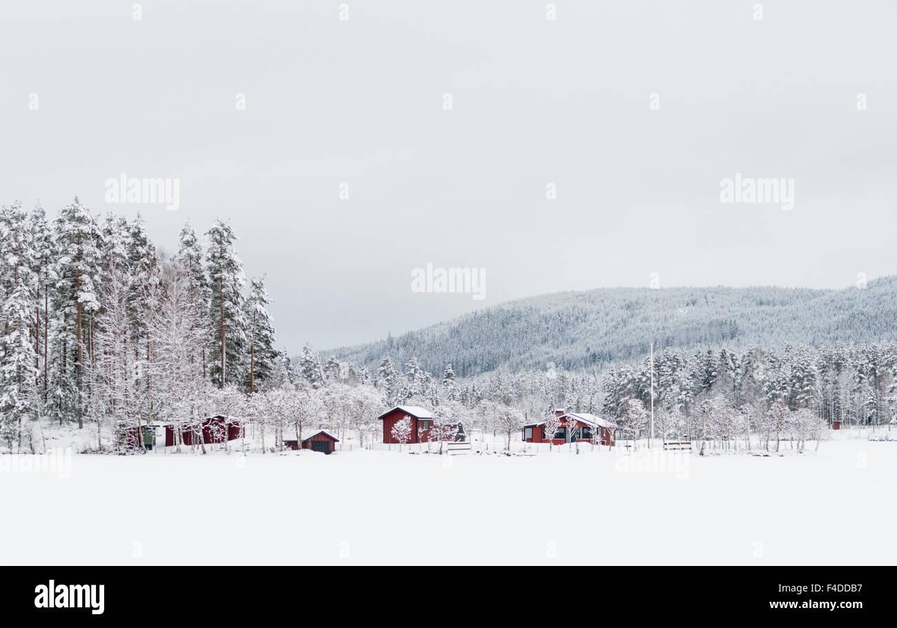 Winter landscape, Sweden - Stock Image
