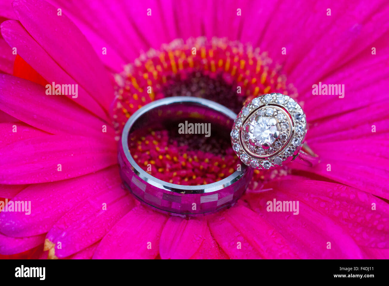 Wedding rings in a flower during a reception, showing the commitment ...