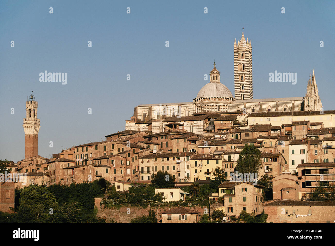 Italy, Tuscany, 13th century Duomo Cathedral and Palazzo Pubblico, Sunset. (Large format sizes available) - Stock Image