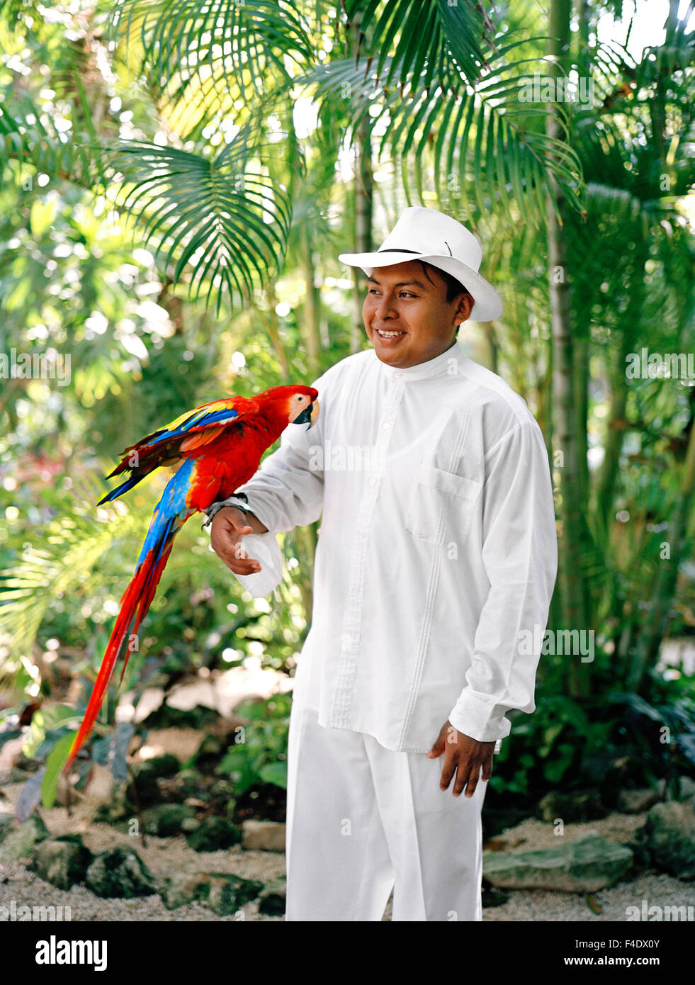 A Mexican staff member holds a Macaw parrot before its feeding time at Maroma Spa and Resort. Riviera Maya,Yucatan,Mexico - Stock Image