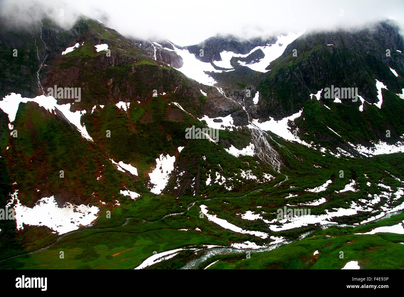 Aerial view of the Tongass National Forest in Juneau, Alaska on the way to the Mendenhall Glacier - Stock Image