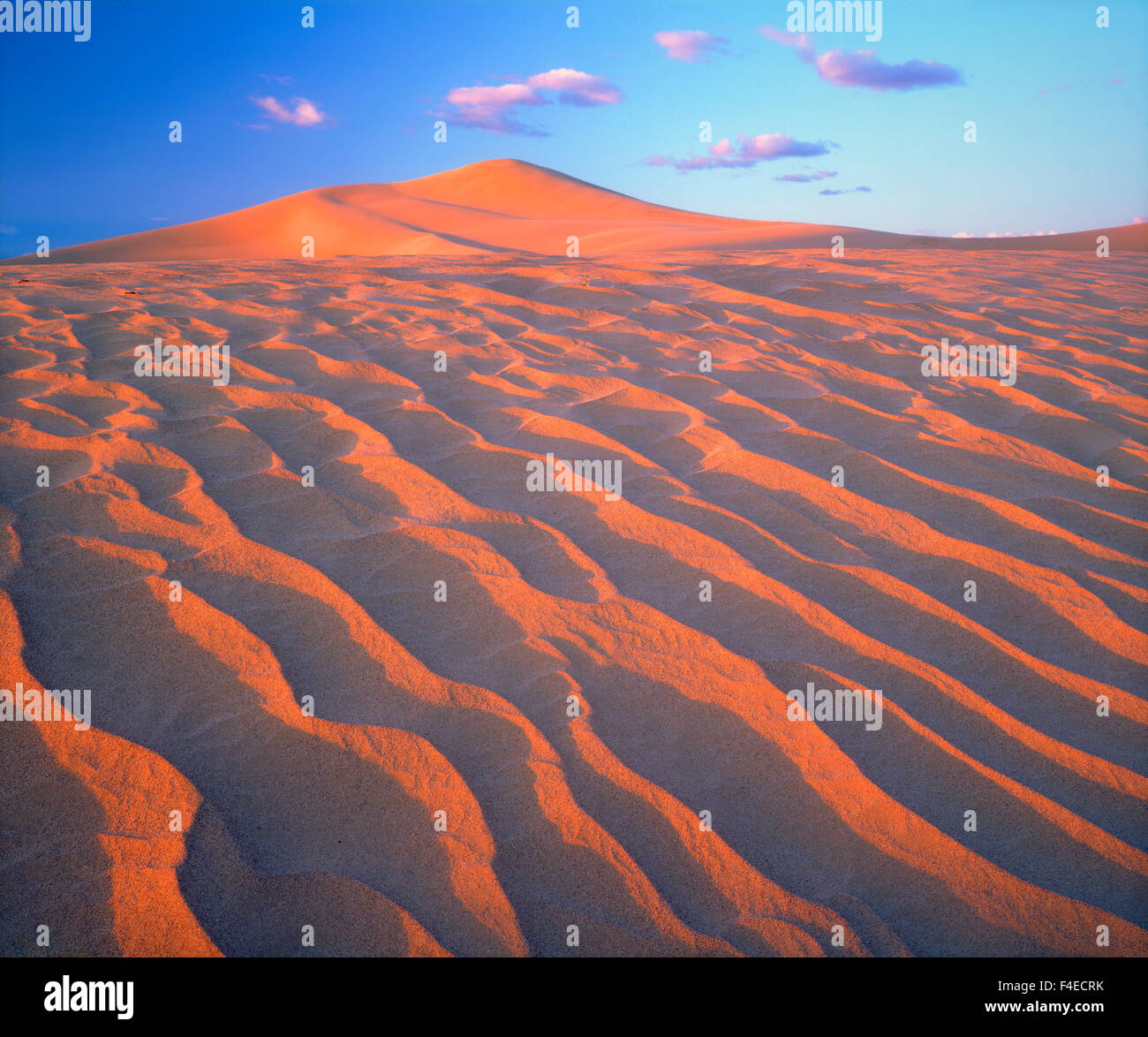 USA, California, Dumont Dunes, Sand Dunes and Clouds. Credit as: Christopher Talbot Frank / Jaynes Gallery / DanitaDelimont.com - Stock Image