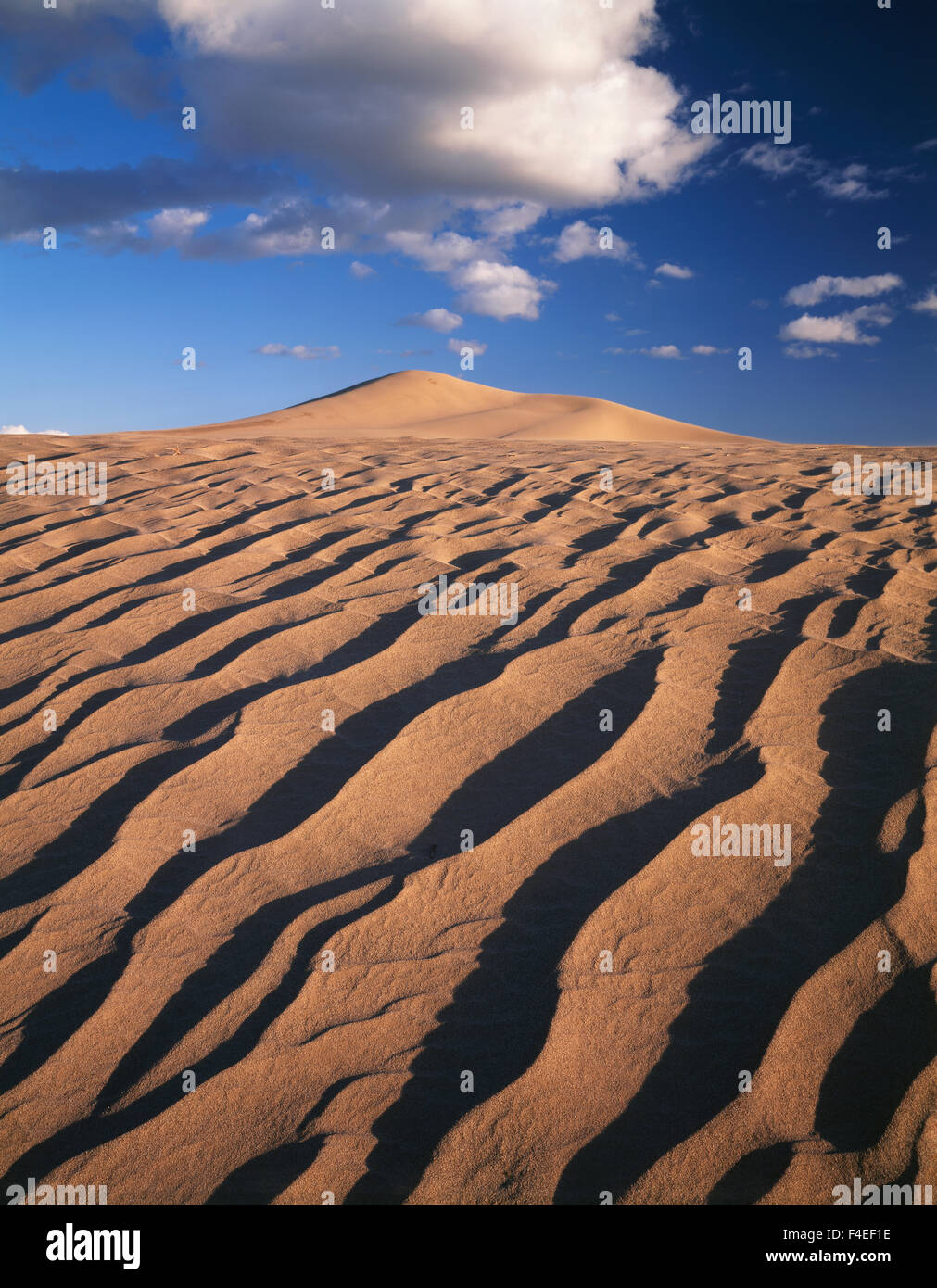 California, Dumont Dunes in the Mojave Desert. (Large format sizes available) - Stock Image