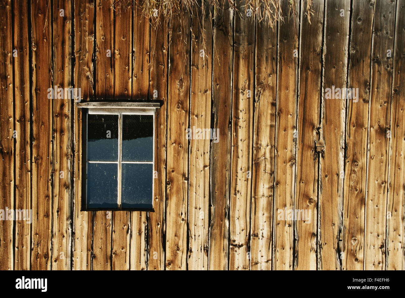 USA, Colorado, Fairplay, South Park City Museum Wall Detail. (Large format sizes available) - Stock Image
