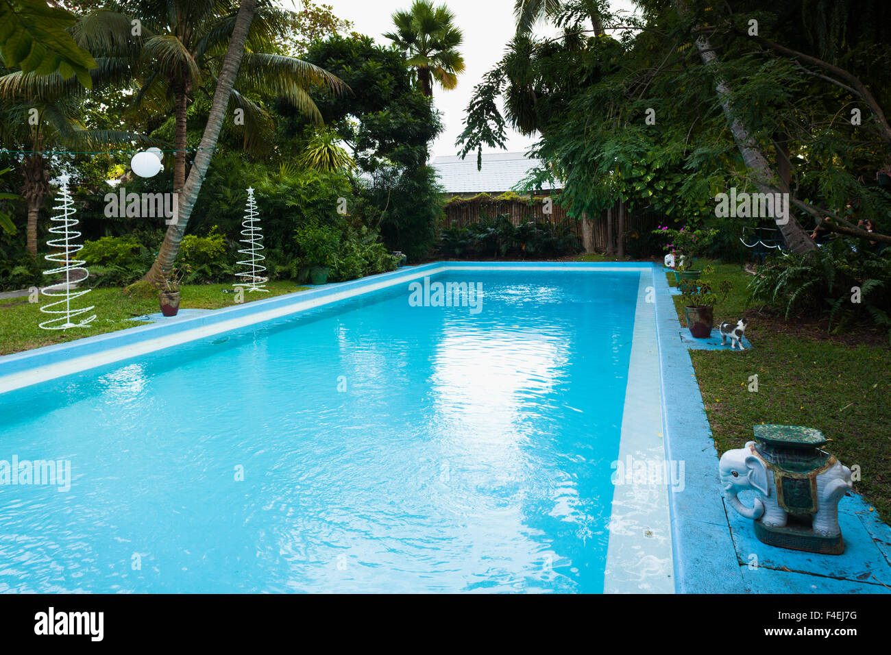 USA, Florida, Florida Keys, Key West, Hemingway House, former residence of famous American writer, swimming pool. Stock Photo