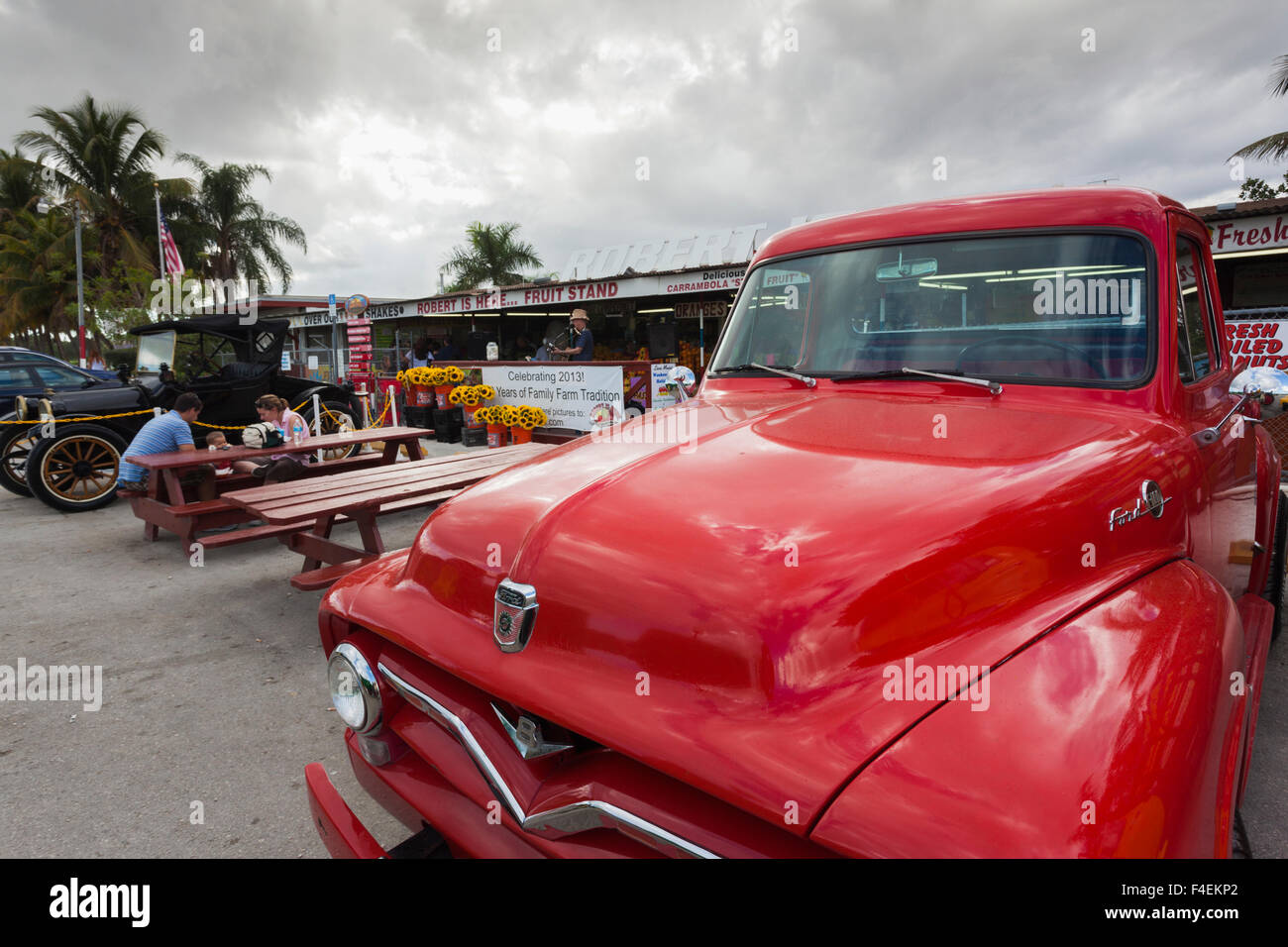 USA, Florida, Homestead, antique pickup trucks. - Stock Image